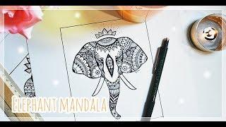 mandala elephants drawing lesson