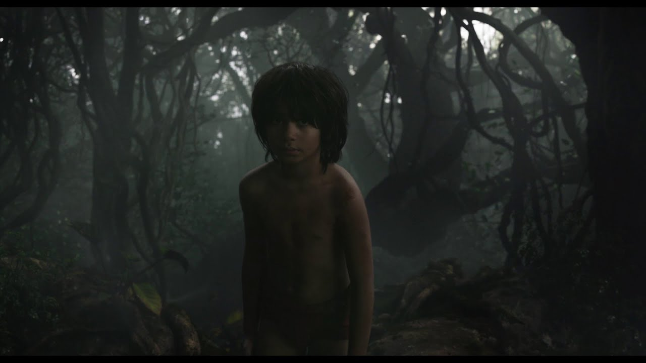Le Livre De La Jungle Extrait Rencontre Avec Kaa I Disney