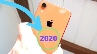 Why iPhone XR is the best iPhone to buy 2020