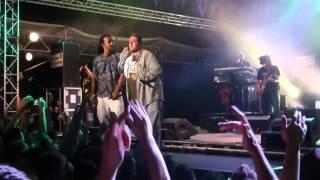"festival ecaussysteme 2014 Dub Inc ""My Freestyle"""