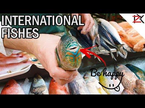 How To Cut Open Large Salmon Fish   International Fish Market BullRing Birmingham   Precision Skills
