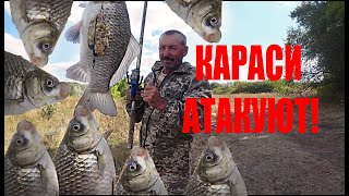 Рыбалка на Карася Fishing Караси не дают покоя VitoFish Время отдохнуть