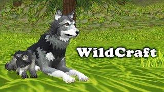 СОЗДАЮ СВОЮ ВОЛЧЬЮ СТАЮ в симуляторе Жизни Зверей - WildCraft