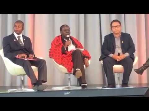 """Smart Villages """"Voices from the Village"""" at SEforALL Forum, New York, April 2017"""