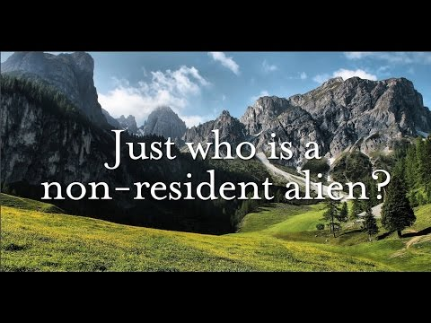 Who Are Non-resident Alien Individuals?