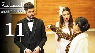 مسلسل الحمامة 11 الحلقة Guvercin - للعربية بالدبلجة