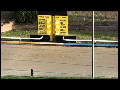Angle-Park-19032015-Race-1