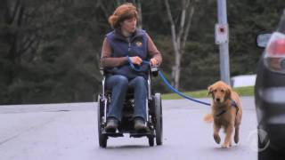 Happy Tails - Pacific Assistance Dog Society
