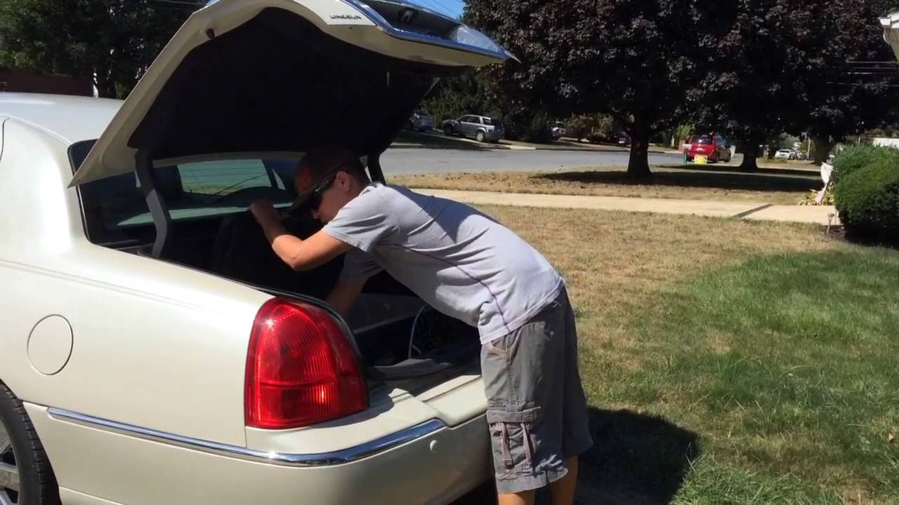 Huge Catfish In Trunk Of Lincoln Town Car