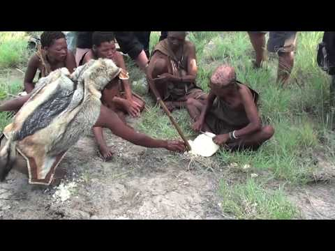 How to Find Water in the Kalahari Desert - Bushman Walk, Ghanzi