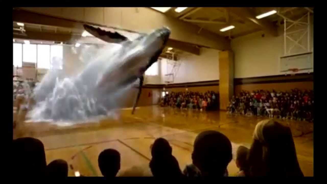 Holograms 3d Whale Youtube