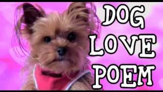 Dog Love Poem: Dog Says I Love You!