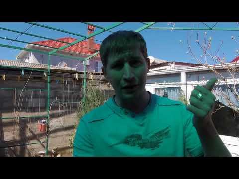 Видео Ставки на футбол с коэффициентом