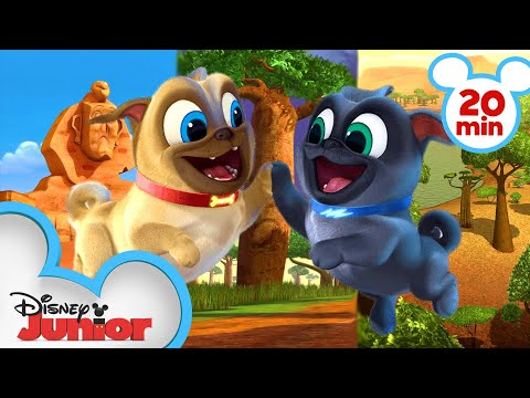 Bingo and Rolly Travel Around Africa! 🌍| Compilation | Puppy Dog Pals | Disney Junior