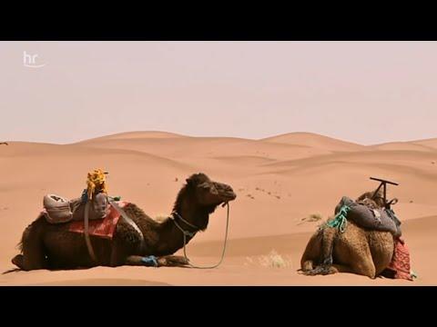 Marokko - Reisereportage