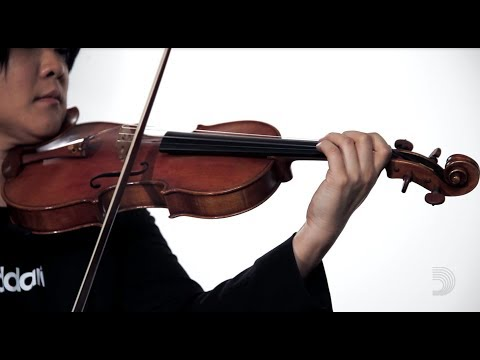 D�rio: Helicore Octave Violin Strings