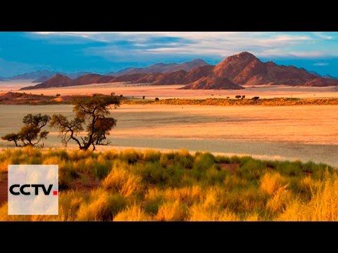 Les Chinois en Afrique Episode 5 Tomber Amoureux de l'Afrique