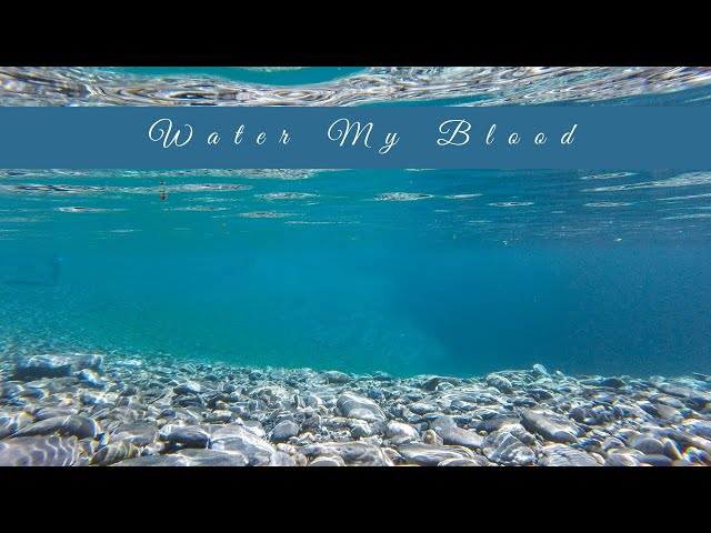Meditation with the Elements: Water my Blood