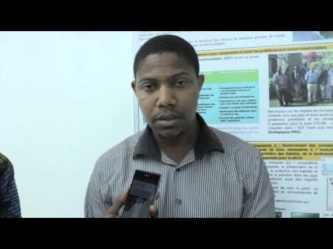 Jianito Tavares Modesto Furtado, Geographe, Direction General de l'environnement