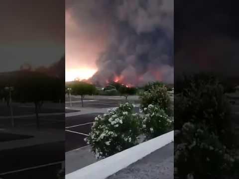 Incêndio com mais de 60 mortos em Pedrógão grande
