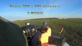 Вепрь - 308 на 600 метров стреляет в 2 МОА!!! 1300 метров все ближе!!!