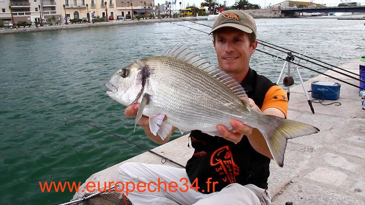 La pêche de la région de Vyborg du domaine de Léningrad