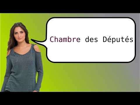How to say 'Lower House' in French?