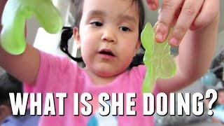 WHAT ARE THEY DOING WITH THOSE?! - May 10, 2017 -  ItsJudysLife Vlogs