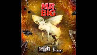 Mr. Big - 03 Stranger In My Life (NEW ALBUM - What If) [HQ]
