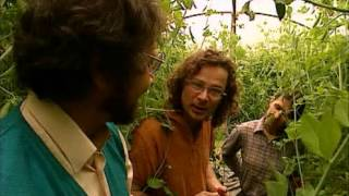 Escape to River cottage   01