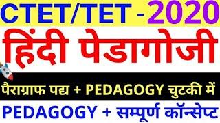 हिंदी पैदागोजी सम्पूर्ण कॉन्सेप्ट पिटारा hindi pedagogy ctet/tet