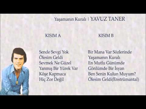 Yavuz Taner