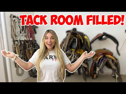 organizing-&-filling-the-tack-room-with-all-my-tack!-|-building-my-dream-horse-barn-part-13!