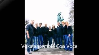 You are the light- Tom Fettke- Con Voce, das junge Vokalensemble