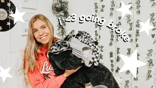 a huge try-on haul (thrifted, dolls kill, & more)