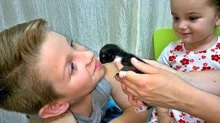 Спасли котенка Кошка родила котят у нас в саду!The KITTEN