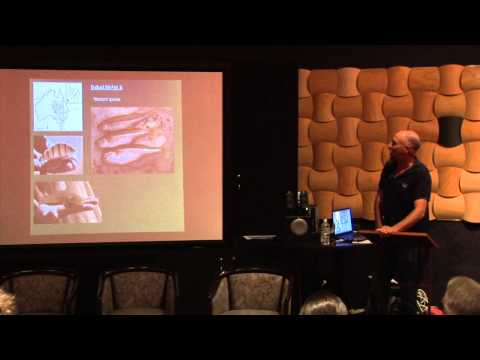 14 Adam Kerezsy - Fish distribution, status and threats in the rivers of the LEB in Queensland
