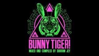 Sharam Jey &amp Daniel Fernandes - Jump Up (Bunny Tiger Selection Vol. 5)