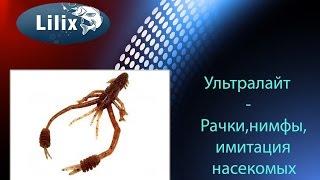 видео Насекомое стрекоза: особенности образа жизни насекомого-хищника