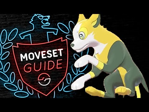 How to use BOLTUND! Boltund Moveset Guide! Pokemon Sword and Shield! ⚔️🛡️