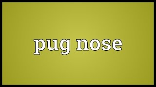 Pug Nose Meaning