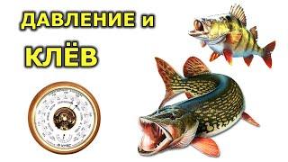 Давление для рыбалки зимой и летом При каком давлении клюет рыба