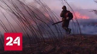 """""""Погода 24"""": пожароопасный сезон на юге Дальнего Востока уже стартовал - Россия 24"""