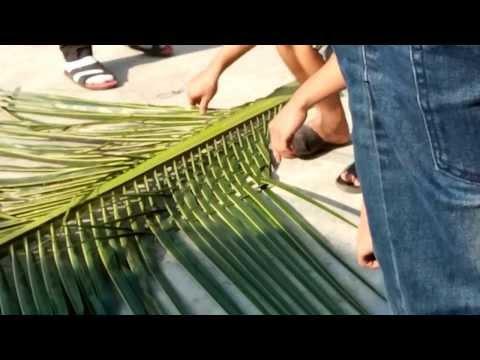 Làm cổng dừa cho chủ rệ (Kim Hùng)