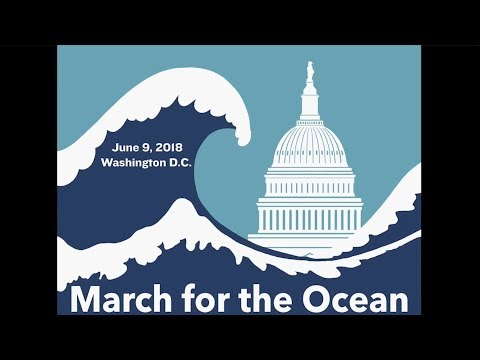 David Helvarg - A Blue Vision and a March for the Ocean