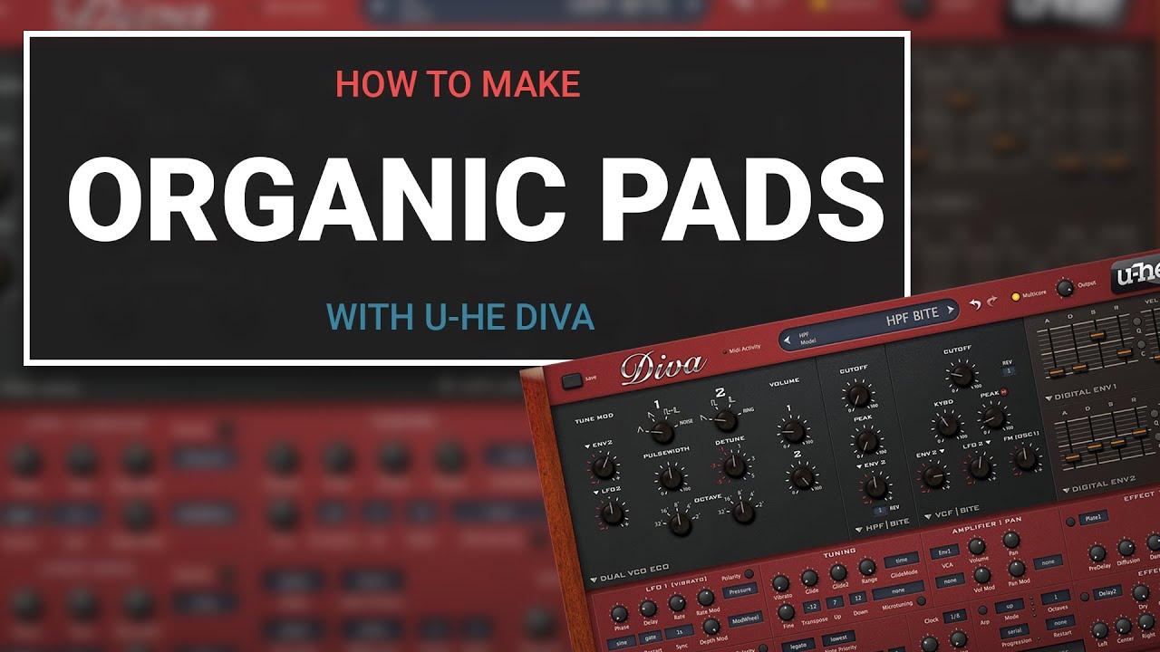 Organic Pads in Diva
