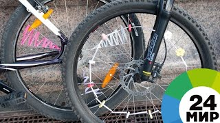 Спортдайджест: два друга из Британии отправились в Японию на велосипедах ради регби - МИР 24