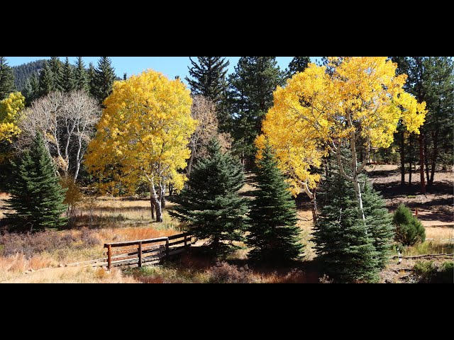 Staunton State Park Colorado - Historic Cabins and Fall Colors