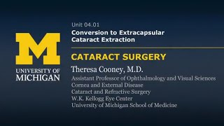 Conversion to Extra-capsular cataract extraction