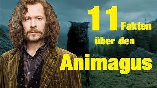 11 FAKTEN über den ANIMAGUS